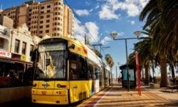 glenelg tram
